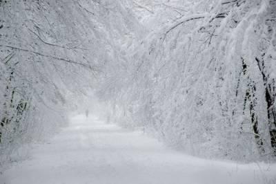 сочинения для детей о зиме